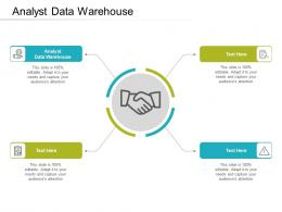 Analyst Data Warehouse Ppt Powerpoint Presentation Icon Infographics Cpb