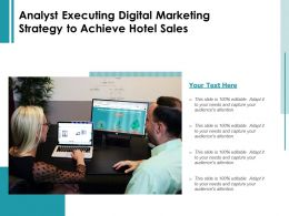 Analyst Executing Digital Marketing Strategy To Achieve Hotel Sales