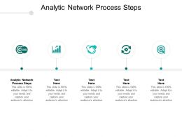 Analytic Network Process Steps Ppt Powerpoint Presentation Summary Infographic Template Cpb