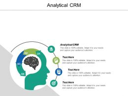 Analytical Crm Ppt Powerpoint Presentation Gallery Background Cpb