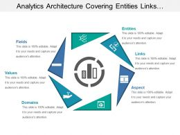 Analytics Architecture Covering Entities Links Domains Values And Fields
