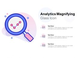 Analytics Magnifying Glass Icon
