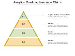 Analytics Roadmap Insurance Claims Ppt Ideas Graphics Download Cpb
