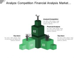 Analyze Competition Financial Analysis Market Profile Brand Strategy