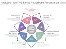 Analyzing Your Workforce Powerpoint Presentation