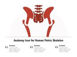 Anatomy Icon For Human Pelvis Skeleton