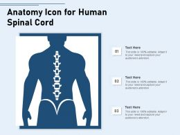 Anatomy Icon For Human Spinal Cord