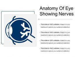 Anatomy Of Eye Showing Nerves