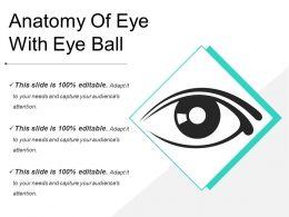 Anatomy Of Eye With Eye Ball