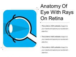 Anatomy Of Eye With Rays On Retina