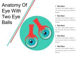 Anatomy Of Eye With Two Eye Balls