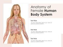 Anatomy Of Female Human Body System