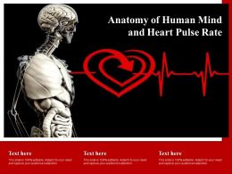 Anatomy Of Human Mind And Heart Pulse Rate
