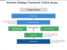 Andrews Strategy Framework Critical Issues Alternative Actions