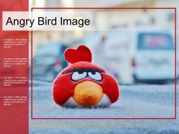 Angry Bird Image