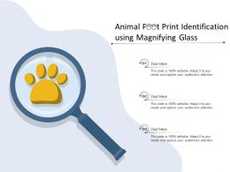 Animal Foot Print Identification Using Magnifying Glass