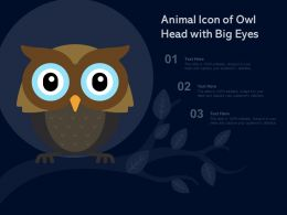 Animal Icon Of Owl Head With Big Eyes