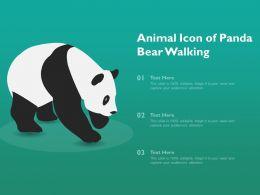 Animal Icon Of Panda Bear Walking