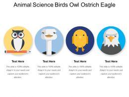 Animal Science Birds Owl Ostrich Eagle