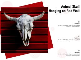 Animal Skull Hanging On Red Wall