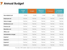 Annual Budget Electricity Cost Ppt Powerpoint Presentation Layouts Template