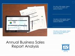 Annual Business Sales Report Analysis