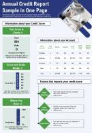 Annual Credit Report Sample In One Page Presentation Report Infographic PPT PDF Document