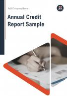 Annual Credit Report Sample PDF DOC PPT Document Report Template