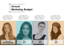 Annual Marketing Budget Ppt Powerpoint Presentation Gallery Slide Cpb