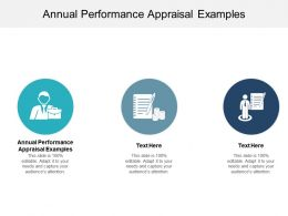 Annual Performance Appraisal Examples Ppt Powerpoint Presentation File Maker Cpb
