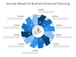 Annual Wheel For Business Financial Planning Infographic Template