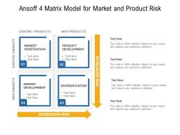 Ansoff 4 Matrix Model For Market And Product Risk