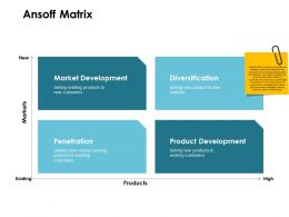 Ansoff Matrix Markets Ppt Powerpoint Presentation Outline Mockup