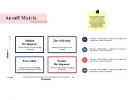 Ansoff Matrix Ppt Summary Slide Portrait