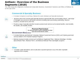 Anthem Overview Of The Business Segments 2018