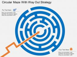 ap Circular Maze With Way Out Strategy Flat Powerpoint Design