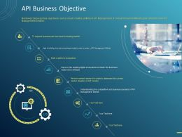 API Business Objective Ppt Powerpoint Presentation Outline Deck