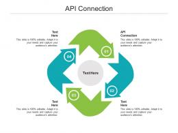 API Connection Ppt Powerpoint Presentation Icon Brochure Cpb
