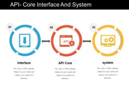 Api Core Interface And System