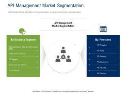 API Ecosystem API Management Market Segmentation Ppt Powerpoint Presentation File Visual Aids