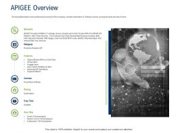 API Ecosystem Apigee Overview Ppt Powerpoint Presentation Inspiration Grid