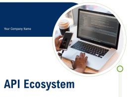 API Ecosystem Powerpoint Presentation Slides