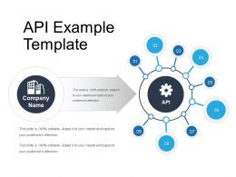 Api Example Template
