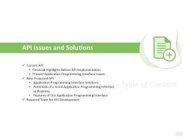 API Issues And Solutions Programming Interface Ppt Presentation Infographics