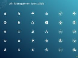 API Management Icons Slide Ppt Powerpoint Presentation File Designs