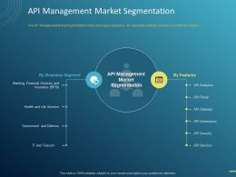 API Management Market Segmentation Ppt Powerpoint Presentation Styles Slide Portrait