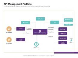 API Management Portfolio Application Programming Interfaces Ecosystem Ppt Infographics