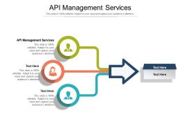 API Management Services Ppt Powerpoint Presentation Layouts Picture Cpb