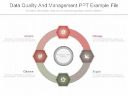 App Data Quality And Management Ppt Example File