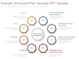 App Example Of Account Plan Template Ppt Samples